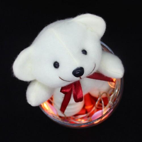 Светящийся подарочный набор-аквариум с подсветкой для любимых Burning Heart ►FRANKLIN-5