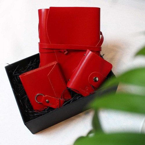 Жіночий набір шкіряних аксесуарів ►Wave Red від Franklin-6