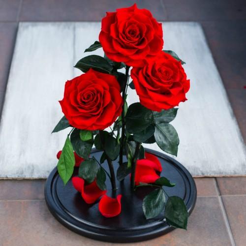 Букет из роз в колбе De Lux-3