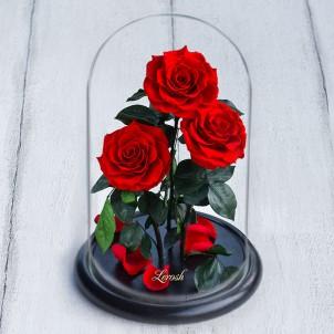 Букет из роз в колбе De Lux-1