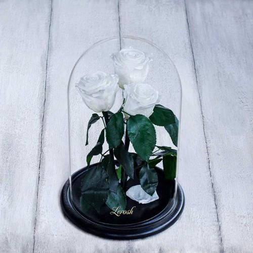 Букет из роз в колбе Standart Белый-1