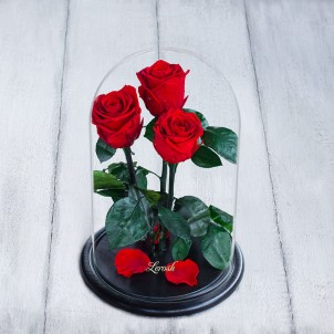 Букет из роз в колбе Standart-1