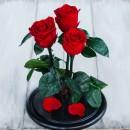 Букет в колбе из трех красных роз Standart-3