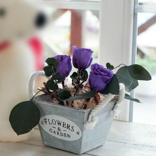 Композиция со стабилизированными розами в металлическом кашпо