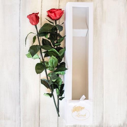 Долгосвежая роза в коробке Standart 60 см-2