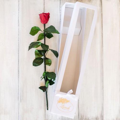 Долгосвежая роза в коробке Standart 60 см-4