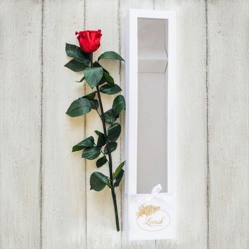 Стабилизированная роза в подарочной коробке Standart