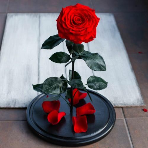 Роза в колбе De Lux 43 см Красная с подсветкой-3