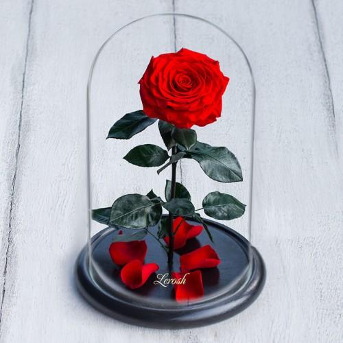 Роза в колбе De Lux 43 см Красная-4