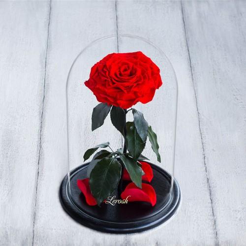 Роза в колбе Lux 30 см Красная-1