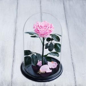 Роза в колбе Lux 30 см Розовая-1
