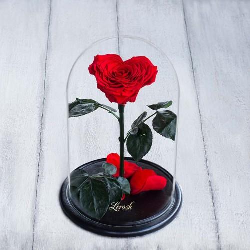 Красная роза в колбе lux Сердце