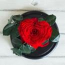 Красная роза в колбе lux Сердце-2