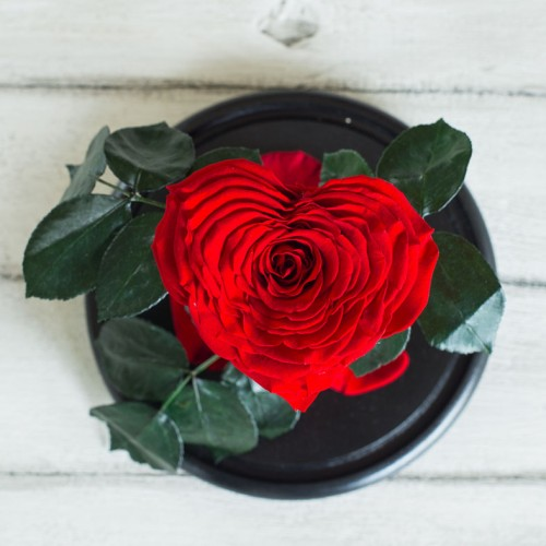Роза в колбе Lux 30 см Сердце-2