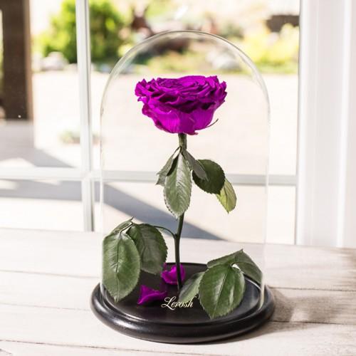 Роза в колбе Lux 30 см Фиолетовая-2