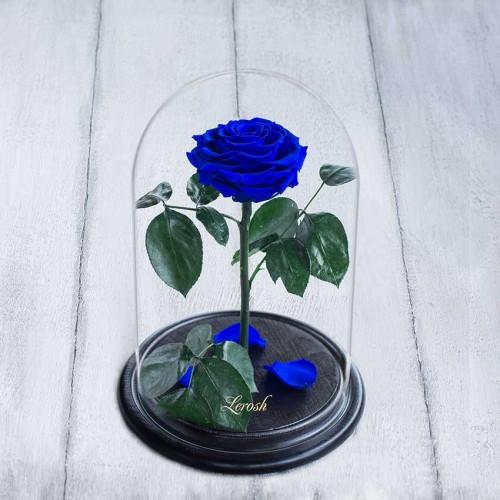 Роза в колбе Lux 30 см Синяя-1