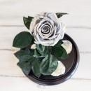Серебристая роза в колбе lux-3