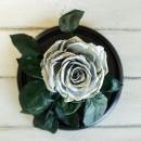 Серебристая роза в колбе lux-2