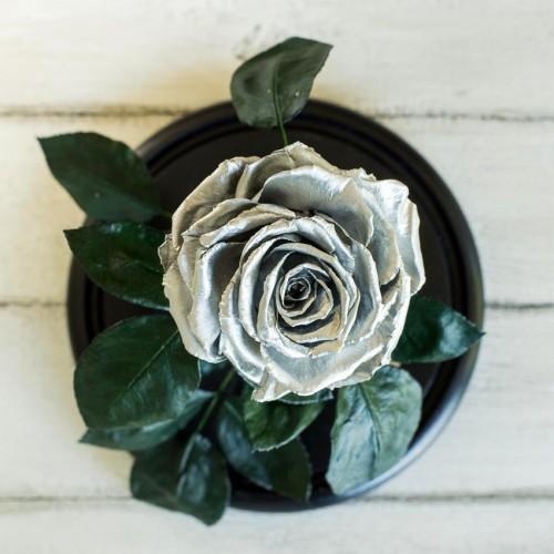 Роза в колбе Lux 30 см Silver-2