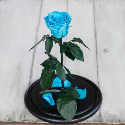 Роза в колбе Standart 33 см Бирюзовая-3