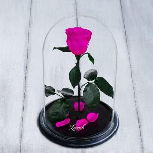 Роза в колбе Standart 33 см Ярко розовая-1