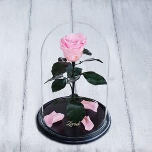 Роза в колбе Standart 33 см Розовая-1