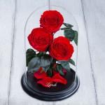 Поразительная реальность - живые неувядающие розы в колбе, игрушки и композиции из стабилизированных цветов